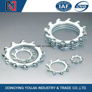 Good Price Toothed Lock Washer with Internal/External Teeth pictures & photos