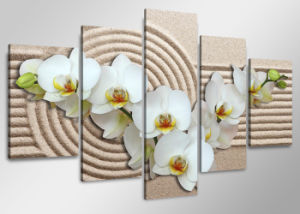 Beautiful Flowers Wall Art Canvas Printing for Home & Restaurant Decoration