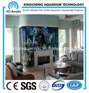 The Family of Embedded Aquarium pictures & photos