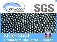 Sandblasting Cast Steel Ball / Steel Shot S660 pictures & photos
