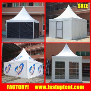 Dia 6m 8m 10m 12m Hexagon Pinnacle Tent with Clear Roof pictures & photos