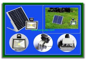 10 Watt Solar Security Floodlight with Sensor pictures & photos