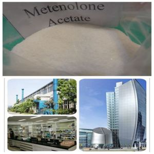 Methenolone Acetate (primobolan) Hormone Steroid China Steroid pictures & photos