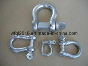 Galvanized Forged Steel Anchor Shackle with Screw in Pin pictures & photos