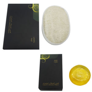 Luxury Hotel Room Amenities List, Hotel Amenities Supplier, Hotel Bathroom Amenities Manufacturer (CARE SET-005) pictures & photos
