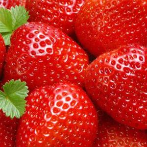Natural Strawberry Flavor, Beverage Flavour, Drink Flavor (F02) pictures & photos