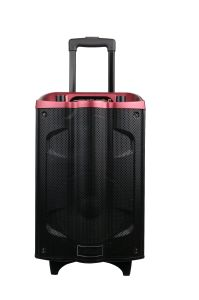 Ce Proved 12 Inches Plastic Trolley Professional Speaker with Battery pictures & photos