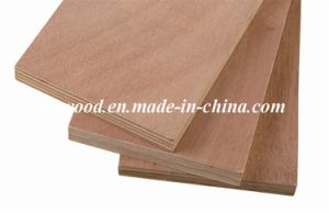 Chinese Plywood with Top Quality for Furniture pictures & photos