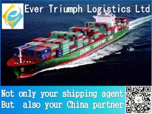 Best and Cheap Sea Shipping From China to Karachi Pakistan