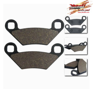 Motorcycle Brake Pad (YL-F163)