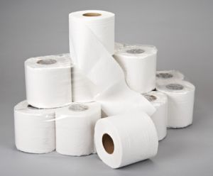 High Quality Household Toilet Tissue Paper, Toilet Rolls pictures & photos