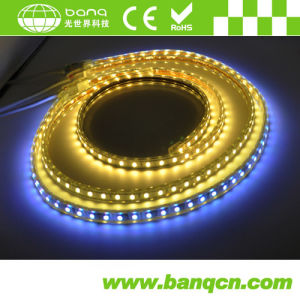 High Lumen 60LEDs Per Meter 5050 SMD 12V LED Strip Light