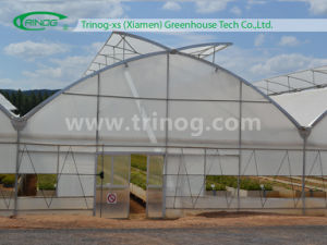 Commercial Multi Span Film Greenhouse for Crops (EU) pictures & photos