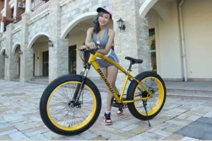 """26""""*4.0"""" Mountain Bicycle Fat Tire Wide Tire Bicycle with 21 Speed pictures & photos"""