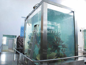 Factory Direct Sale! Acrylic Transparent Square Fish Tank pictures & photos