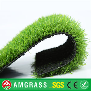 Deep Green Tennis Artificial Grass, Soccer Field Turf Artificial Turf pictures & photos