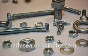 Powder Coated Standard Fasteners pictures & photos