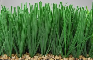 Football Artificial Grass Used at School/Outdoor (Y50) pictures & photos