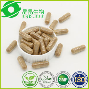 Cordyceps Sinensis Extract Powder Prostate Health Capsule pictures & photos