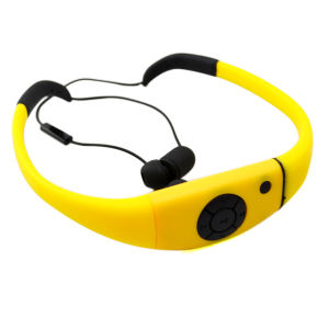 Ipx8 Waterproof Bluetooth Stereo Headset (BHWBH9)