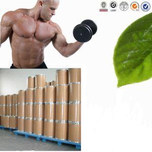 Creatine Monohydrate Powder N-Amidinosarcosine pictures & photos