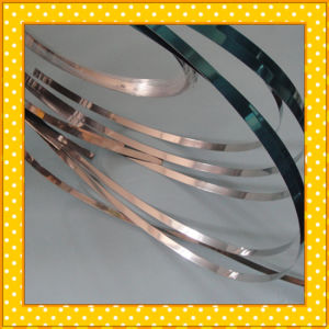 304 Stainless Steel Ribbon pictures & photos