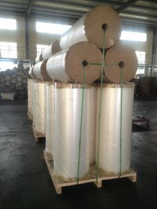 Metalized Film, VMCPP Film, Metallized CPP Film, Vacuum Aluminum CPP Film pictures & photos