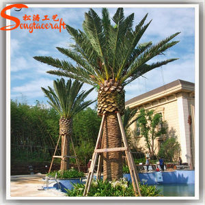 Wholesale Garden Decoration Artificial Plant Date Palm Trees pictures & photos