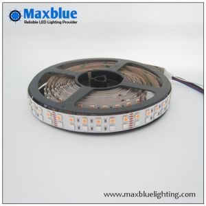 DC12V/24V 144LEDs/M Double Row SMD5050 RGBW LED Strip Light pictures & photos