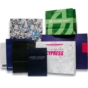Fashional Shopping Paper Bags Full Colour Printingservice pictures & photos