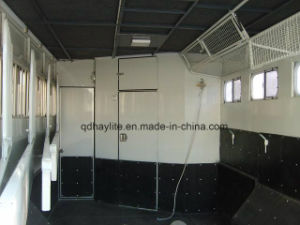 2 Horse Straight Load Float - Deluxe Horse Float Horse Trailer pictures & photos