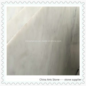 Chrystal White/ White Onxy/Marble Slab for Tile pictures & photos