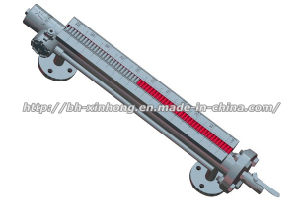 Magnetic Flap Type Level Meter pictures & photos