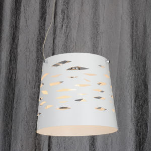 Nice Modern Indoor Decorative Lamp Light in White Color pictures & photos