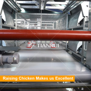 Automatic Scrapper Chicken Manure Cleaning Equipment pictures & photos