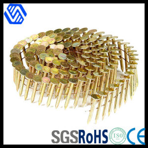 Brass Coil Nails pictures & photos