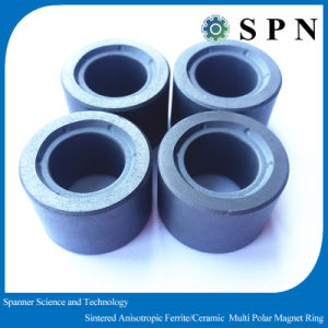 Ferrite Isotropic Ring Magnet Multipoles for Stepping Motor pictures & photos