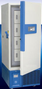 -105 C Upright Freezer (MCF-DW-ML328) pictures & photos
