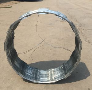 Hot Dipped Galvanized Razor Barbed Wire Cbt65/Factory Supplier pictures & photos