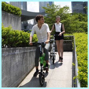 New Products 2016 250W Lithium Battery Chinese Mini Chainless Folding Electric Bike pictures & photos