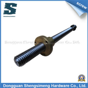 Screw (Processing Machinery)