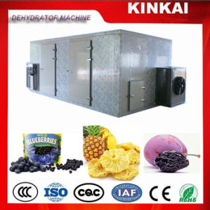 Red Dates Dehydrator, Lemon/Mango Fruits Drying Machines pictures & photos