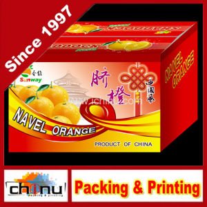Cardboard Colored Printing Corrugated Box (1149) pictures & photos
