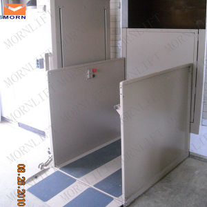 2m Hydraulic Disabled Platform Lift pictures & photos