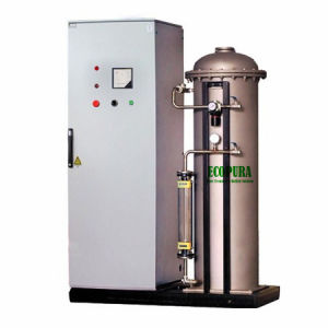 600g/H Ozone Generator for Drinking Water Treatment pictures & photos