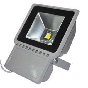 LED landscape light 60W 12V pictures & photos
