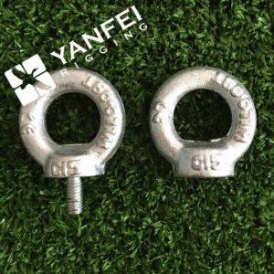 DIN580 Drop Forged Eye Bolt pictures & photos