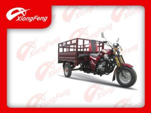 Cargo Tricycle (XF150ZH-11) / Air-Cooled Tricycle, Three Wheels Vehicle pictures & photos