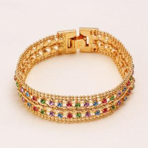 2014 Fashion Jewelry Gemstone Bracelet (71635) pictures & photos
