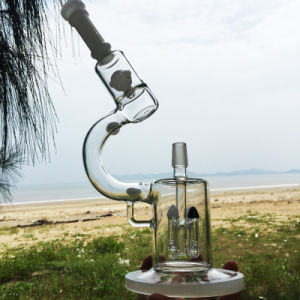 Darwin′s Microscope Elegant Enjoyment Design Glass Smoking Water Piepes (ES-GD-281) pictures & photos
